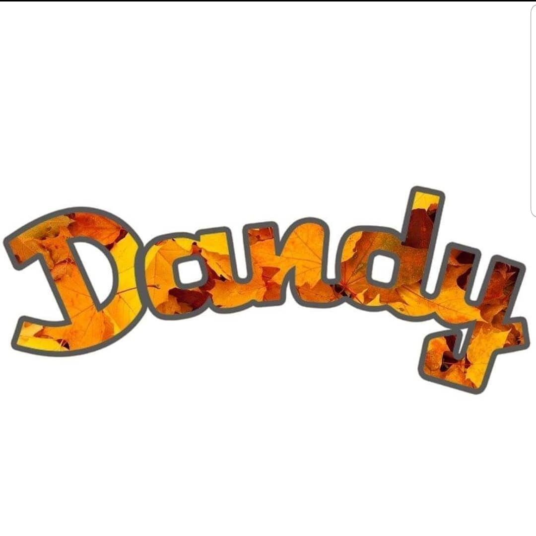 Dandy Service Corporation